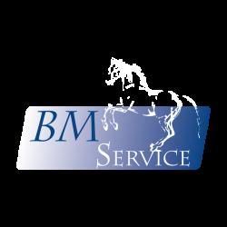 Update 6-logo wit paard PNG vierkant